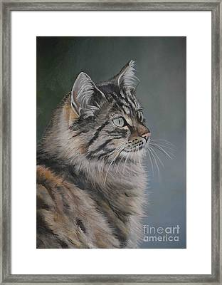 Marble Framed Print by Charlotte Yealey