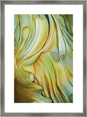 Marble Robe Framed Print by Becky Titus