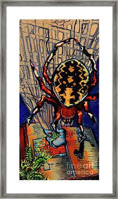 Marbled Orbweaver Framed Print by Emily McLaughlin