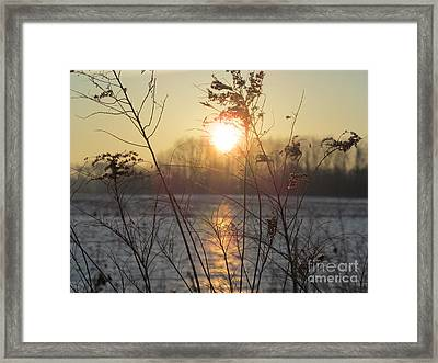 March 2 2013 Sunrise Framed Print by Tina M Wenger
