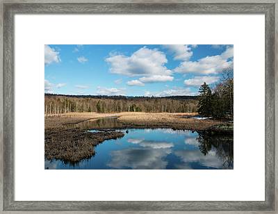 March Afternoon At Black Creek Framed Print