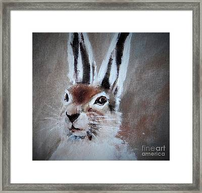 March Hare In Colour Framed Print by Angela Cartner