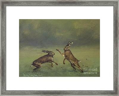 March Hares Framed Print by Sean Conlon