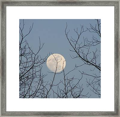 March Moon Framed Print