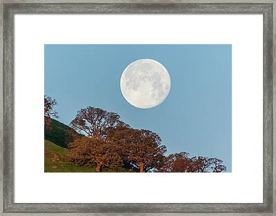 Framed Print featuring the photograph March Moonset by Marc Crumpler