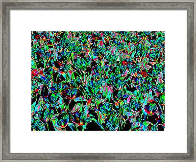 March Of The Flowers Framed Print by Rodger Insh