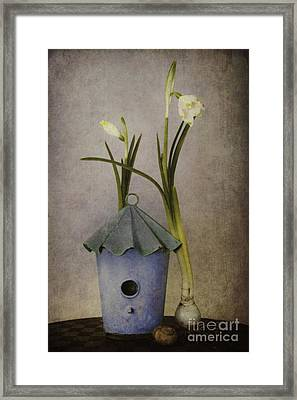 March Framed Print by Priska Wettstein