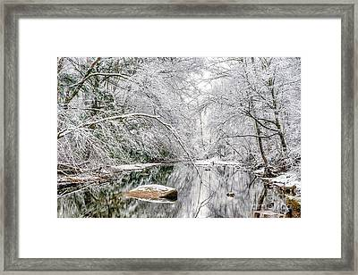 Framed Print featuring the photograph March Snow Along Cranberry River by Thomas R Fletcher