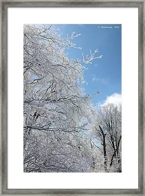 March Winters  Framed Print by Carolyn Postelwait