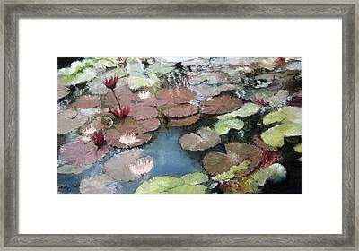 Marcia's Lillies Framed Print by Anita Stoll