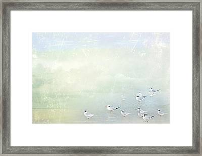 Framed Print featuring the photograph Marco Morning by Karen Lynch