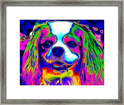 Mardi Gras Dog Framed Print