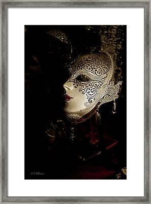 Mardi Gras Mask Framed Print by Christopher Holmes