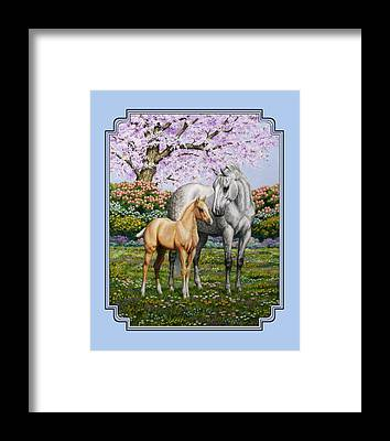 Palomino Foal Framed Prints