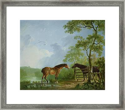 Mare And Stallion In A Landscape Framed Print by Sawrey Gilpin