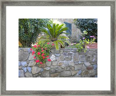 Maremma Garden Framed Print by Nancy Ferrier