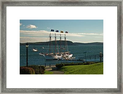 Margaret Todd - Bar Harbor Icon Framed Print