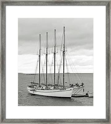 Margaret Todd Framed Print by Betsy Knapp