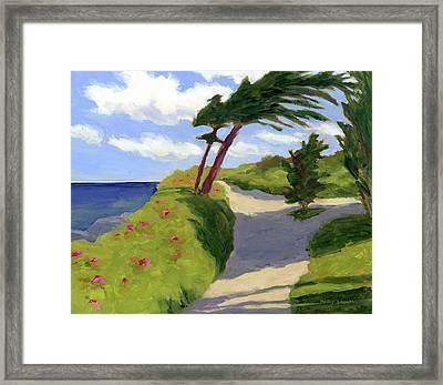 Marginal Way Path Framed Print