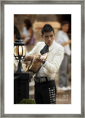 Mariachi Performer Framed Print by Juli Scalzi