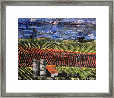 Marianne's Vineyard Framed Print by Lisa McKinney