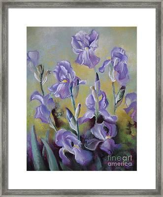 Maria's Irises Framed Print