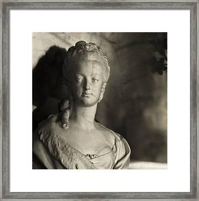 Marie Antoinette Framed Print by Hsin Liu