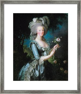 Marie-antoinette With The Rose Framed Print