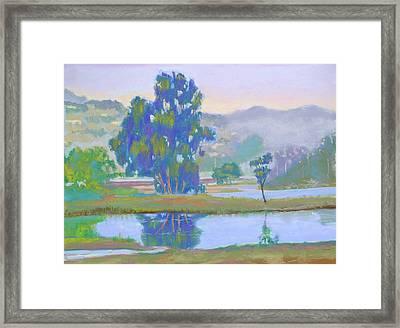 Marin Lagoon Framed Print by Dan Scannell
