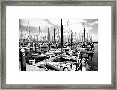 Marina In Black And White Framed Print by Sean Gillespie