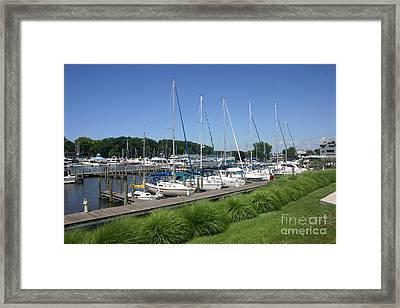 Marina On Black River Framed Print