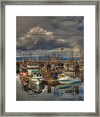 Marina Framed Print by Randy Hall