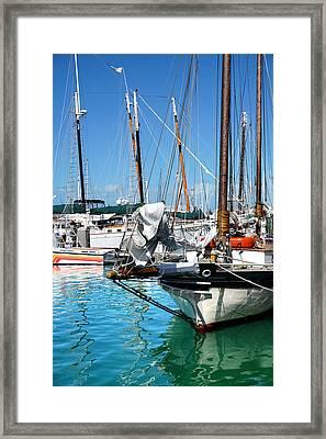 Marinas And Masts  Framed Print