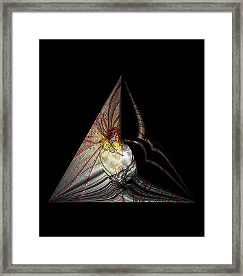 Framed Print featuring the photograph Marine Life Abstrat 7 by Irma BACKELANT GALLERIES