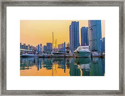 Marine Park, Busan, Korea Framed Print