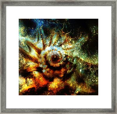 Marine Sea Shell . Painting Collage With Abstract Color  Framed Print