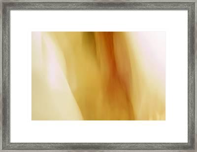 Mariola Framed Print