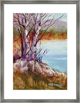 Mari's Birches Framed Print by Kris Parins