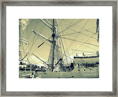 Maritime Spiderweb Framed Print