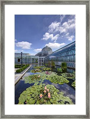 Marjorie Mcneely Conservatory At Como Park And Zoo Framed Print