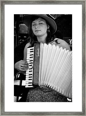 Market Accordion Player Framed Print by David Patterson