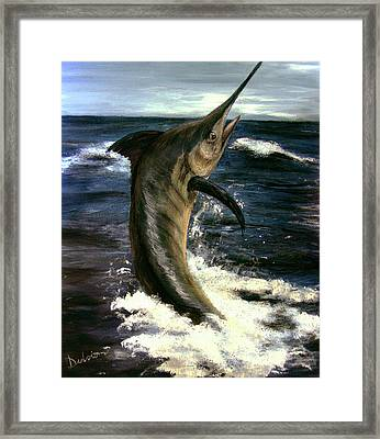 Marlin Framed Print