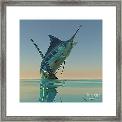 Marlin Sport Fish Framed Print by Corey Ford