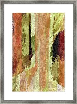 Marmalade Slide Framed Print