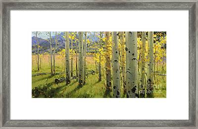 Maroon Creek Framed Print by Gary Kim