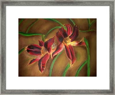 Maroon Lillies Framed Print by Latha  Vasudevan