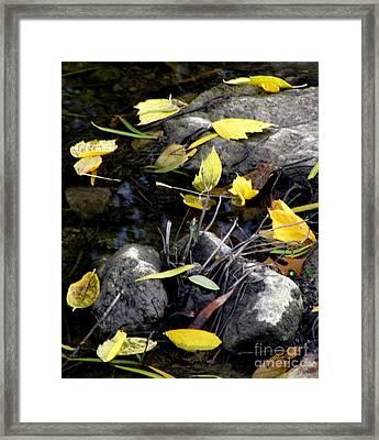 Marooned Framed Print