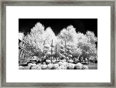 Marseille Nature Framed Print by John Rizzuto