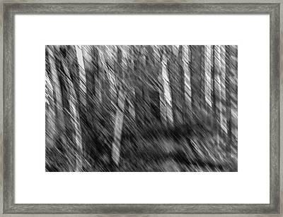 Marsh Abstract Framed Print