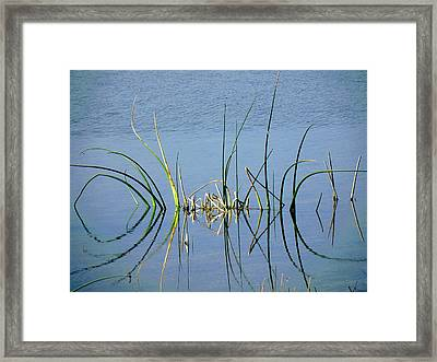 Marsh Design Framed Print by Rosalie Scanlon